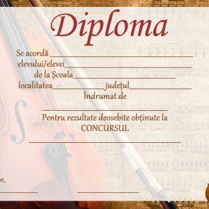 B_8 Diploma concurs